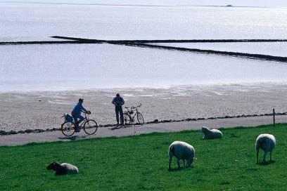 Das Wattenmeer der Nordsee ist Weltnaturerbe und nur ein Höhepunkt des Weserradweges