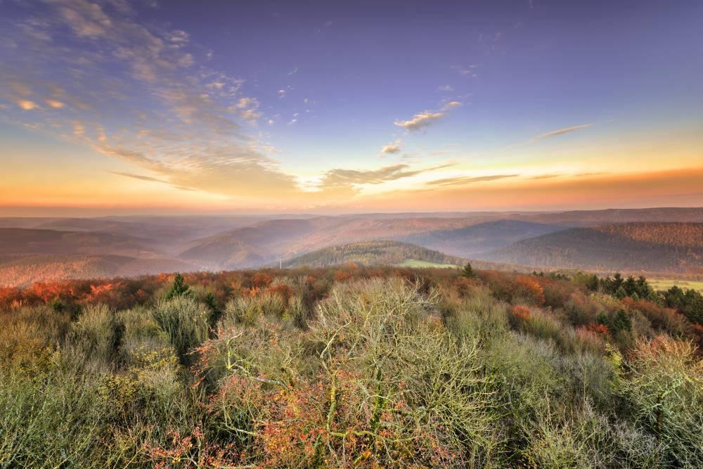 Der Odenwald bietet für Tausende Kilometer Wanderwege