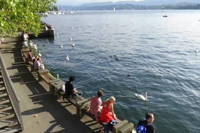 Hier ist Platz für alle: am Zürichsee