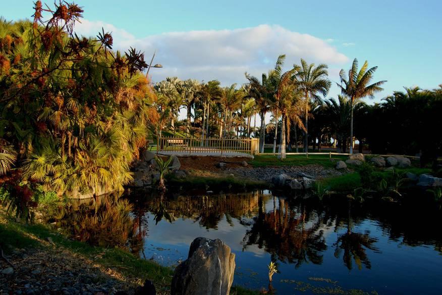 Manche Dinge brauchen einfach etwas Zeit: 1995 wurde mit dem Palmengarten auf Teneriffa begonnen, in diesem Jahr wurde er schließlich eröffnet