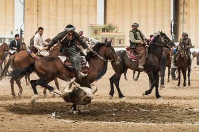 Tierliebhaber empfinden beim Buzkashi, wie hier ausgetragen in Afghanistan, wohl kaum Spannung oder Freude