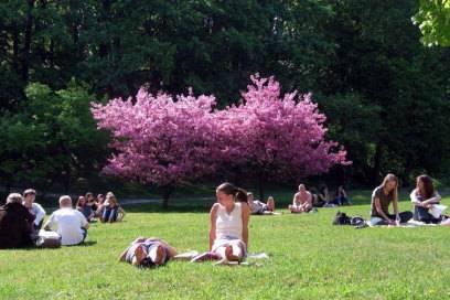 Abhängen im Pigorow-Park – er liegt gleich hinter dem Rathaus und ist besonders bei Studenten angesagt