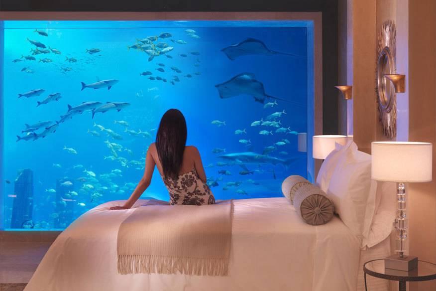 Von Florida bis Fidschi: Die 7 schönsten Unterwasser-Hotels der Welt ...