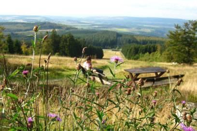 Aussicht vom Erbeskopf im Nationalpark Hunsrück-Hochwald