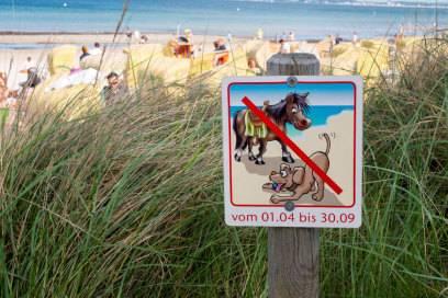 An diesem Strand in Scharbeutz sind Hunde (und Pferde) nur in der Nebensaison erlaubt