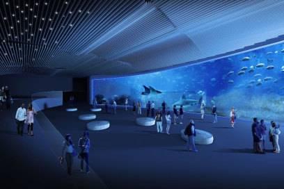 Das geplante Aquarium fasst 7,5 Millionen Liter Wasser
