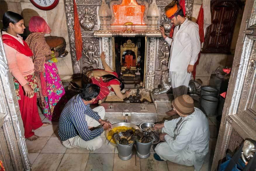 Die Gläubigen essen, trinken, schlafen und beten gemeinsam mit den Ratten, die ihnen Glück bringen sollen