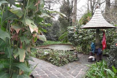 Eines der Schwimmbecken im Terra-Nostra-Park bei Furnas, der neben den Thermalquellen auch noch einen wunderschönen botanischen Garten bietet