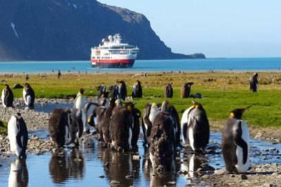"""Zu Besuch bei den Pinguinen: Die """"Fram"""" fährt unter anderem in die Antarktis"""