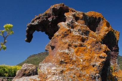 Fotostopp am Straßenrand: Der Roccia dell'elefante ist etwas außerhalb von Castelsardo zu finden