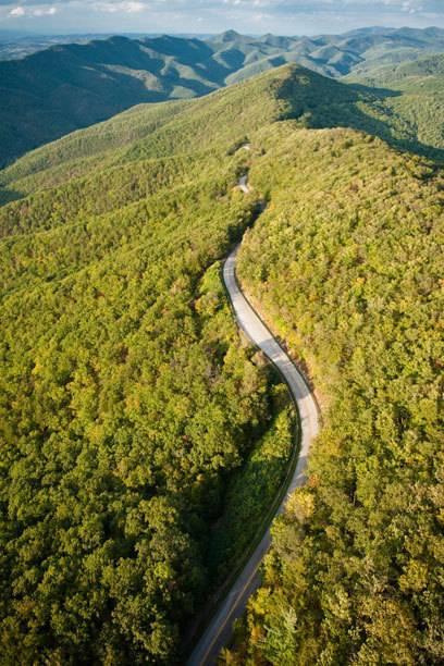 Der Blueridge Parkway führt durch üppige Wälder und über sanfte Hügel