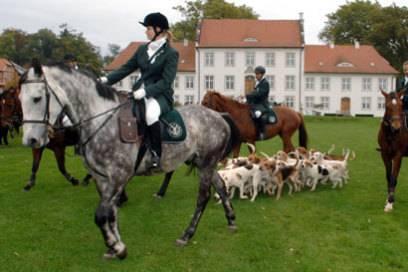 Wilder Westen oder English Countryside: Das Reitergut Boldevitz ist auch bei Prominenten wie Schauspieler Till Demtröder beliebt