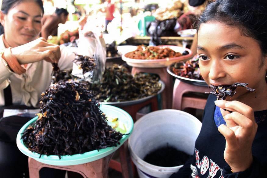 Angesichts solcher Fotos, verwundert es nicht, dass das kambodschanische Dorf Skun auch Spiderville, Spinnenstadt, genannt wird