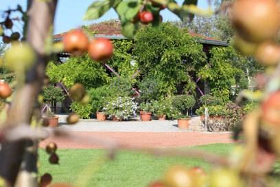 """Im ersten Gartenzimmer namens """"Eifer"""" steht ein wunderschöner, zugewachsener Pavillon"""