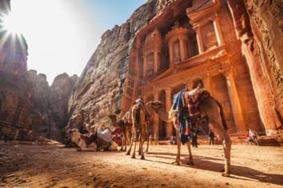 Ein Kamel in der Felsenstadt Petra
