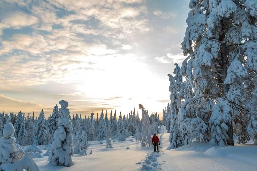, das klingt nach extremer Kälte, Eis und Schnee. Neben Minusgraden im zweistelligen Bereich ist die Region bekannt für seine märchenhafte Tannen-Landschaften, die etwa von Dezember bis März mit einer dicken Schneeschicht bedeckt sind.
