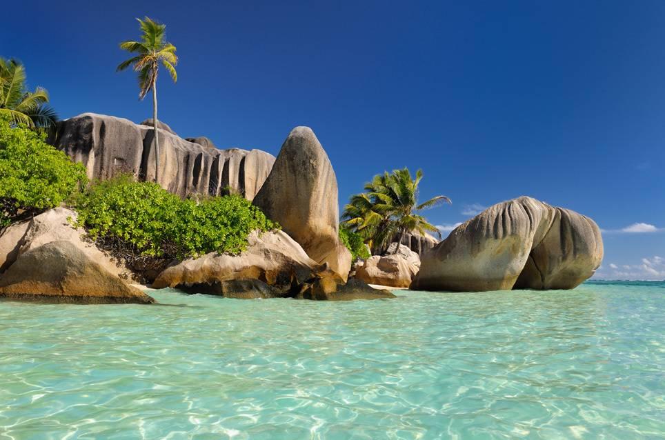 Haie seychellen