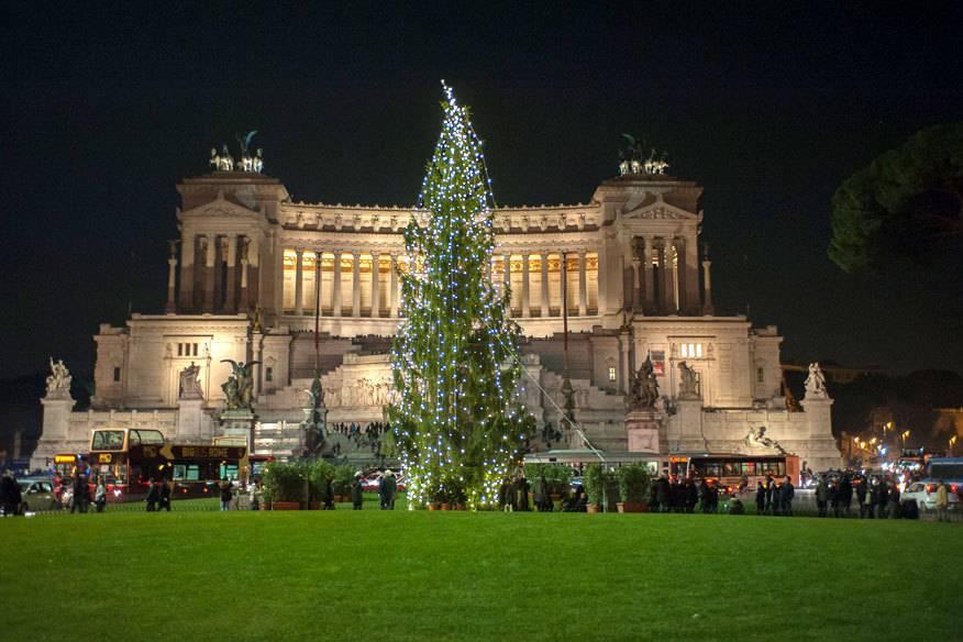 h sslichster baum der welt roms weihnachtsbaum wird zur. Black Bedroom Furniture Sets. Home Design Ideas