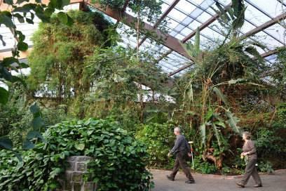 Die Schmetterlingsfarm ist im Winter von 10 bis 16:30 Uhr geöffnet
