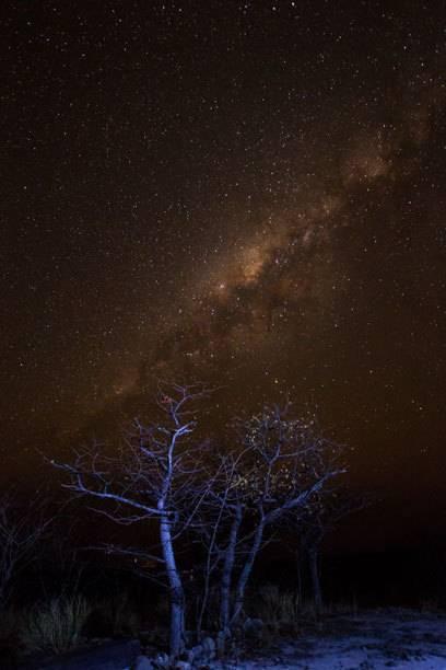 Die Sternenpracht am Himmel über Namibia ist schier überwältigend