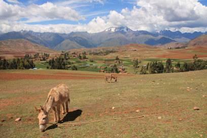 Peru hat seine ganz eigene Idylle