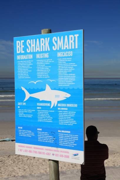 In Muizenberg, einem Vorort von Kapstadt, warnt ein Schild vor der Haigefahr im Wasser