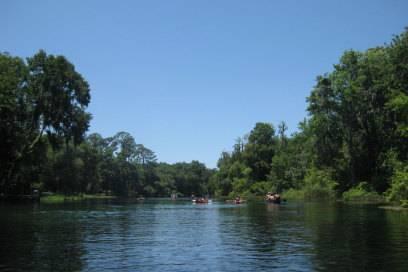 Den Rainbow River mit kristallklarem Wasser kann man gut mit dem Kajak erkunden