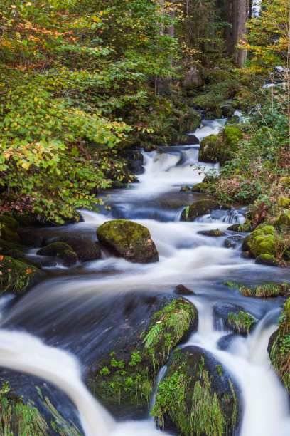 Begeisterte Wanderer werden bei einem Ausflug in den Schwarzwald nicht enttäuscht