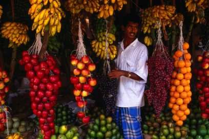Rote Bananen,Pitahayaund vieles mehr: die Vielfalt an exotischen Früchten auf Sri Lanka ist atemberaubend