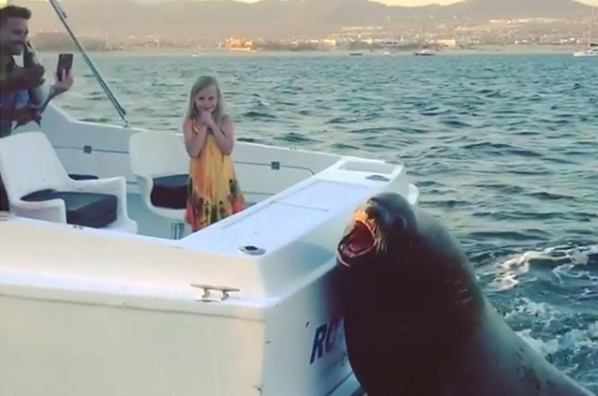 Garota de programa auf Boot
