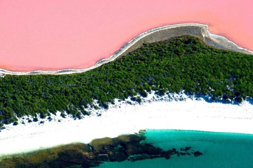Blick aus der Vogelperspektive auf das Farbenspiel aus Meer, Strand, Wald und See.