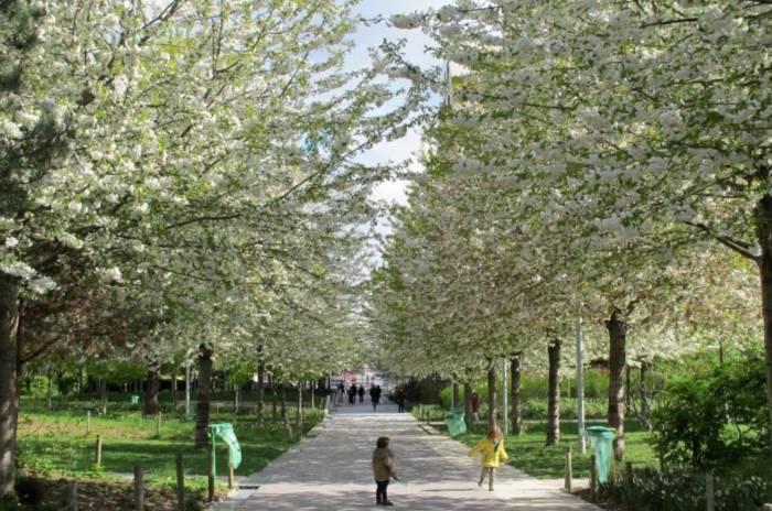 Parc Clichy-Batignolles Martin-Luther-King