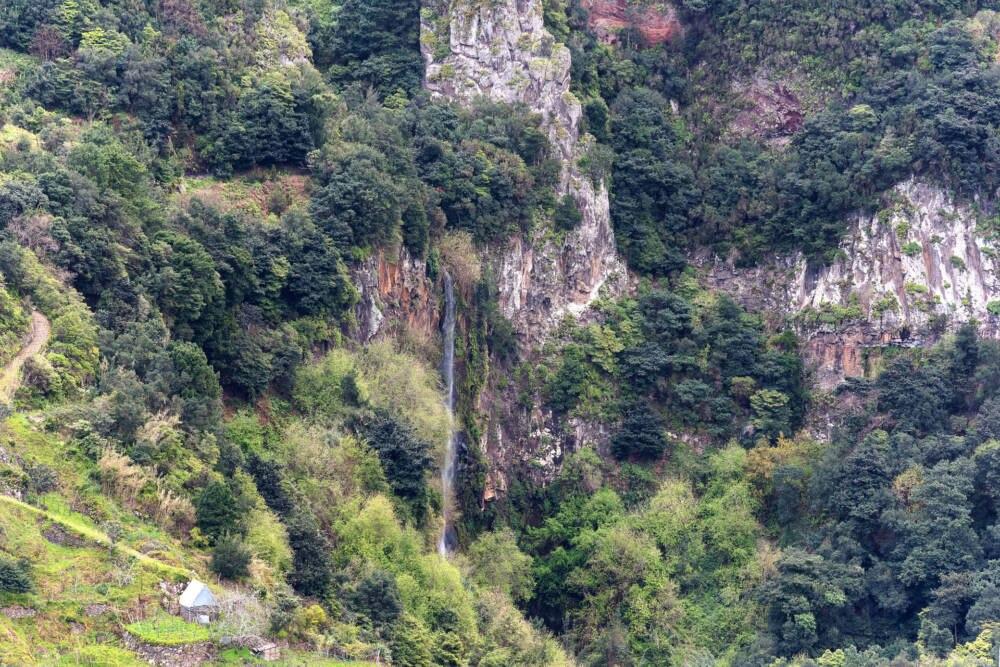 gefährdete UNESCO-Welterben, Lorbeerwälder von Madeira