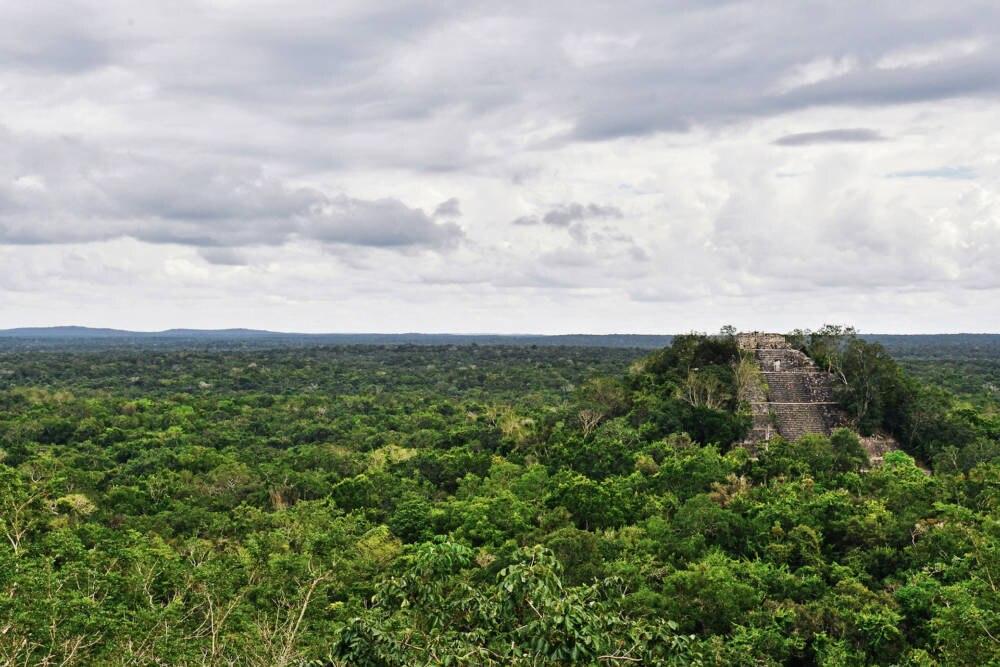 gefährdete UNESCO-Welterben, Calakmul