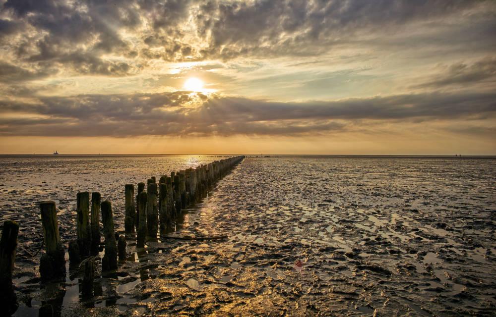 gefährdete UNESCO-Welterben Wattenmeer