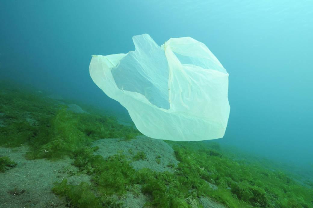 Plastikmüll, Plastiktüten in Kenia