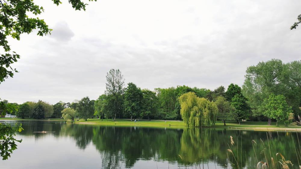 Der Auwaldsee ist leicht erreichbar und trotzdem von Grün umgeben