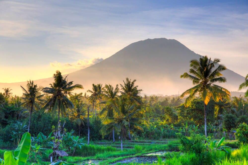 Reisfelder, Palmen und Vulkane – die Natur in Bali ist spektakulär