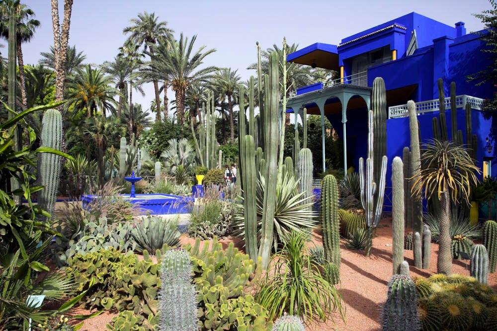 """Der Garten """"Jardin Majorelle"""" von Yves Saint Laurent in Marrakesch"""