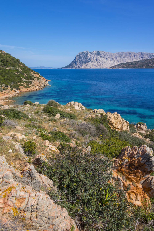 Tavolara Sardinien
