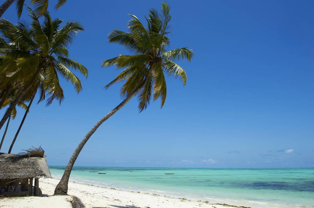 Der Jambiani Beach auf Sansibar. Die Strände gehören zu den schönsten Afrikas