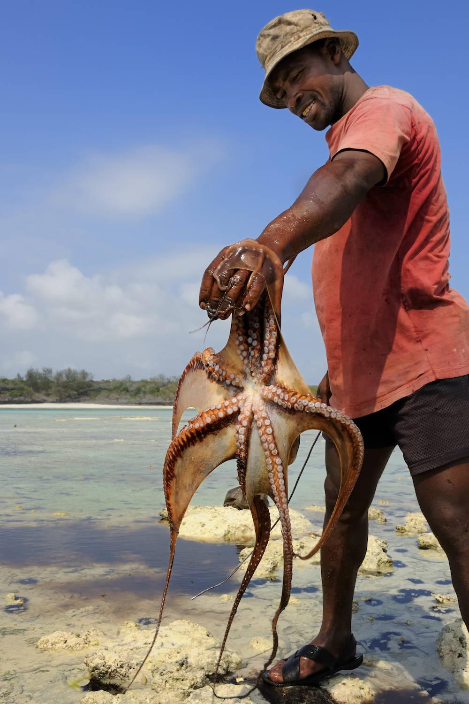 Ein Fischer in Bwejuu hat einen Oktopus gefangen – oder war's umgekehrt?