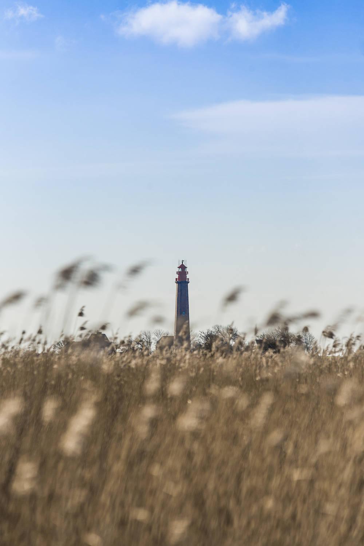 Der Leuchtturm Flügge auf Fehmarn