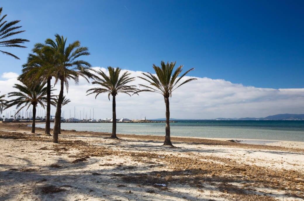 Strand, Winter Mallorca