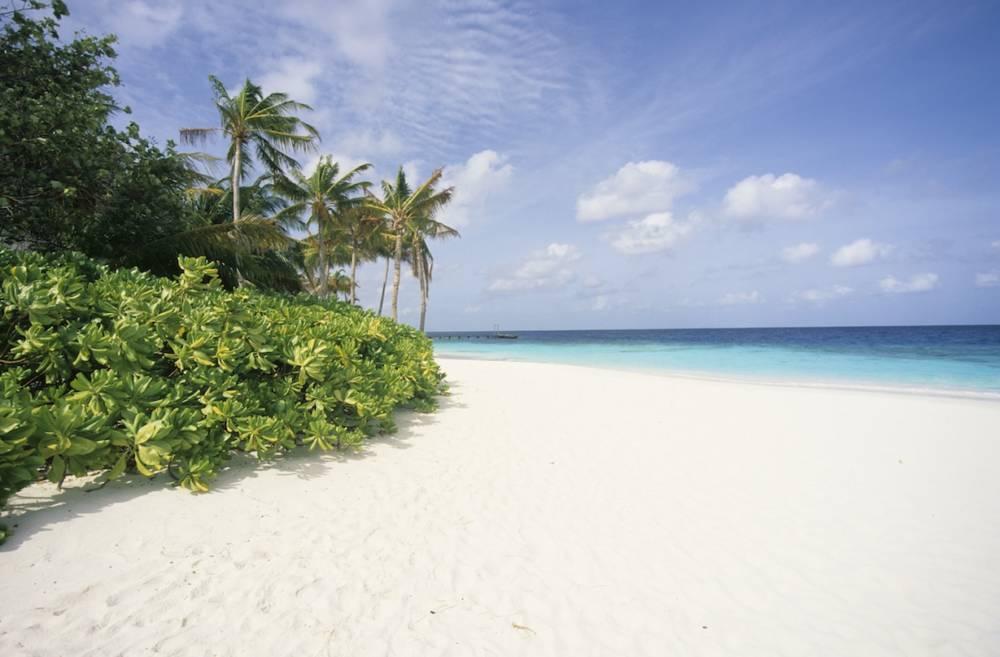 weißer Strand in den Malediven