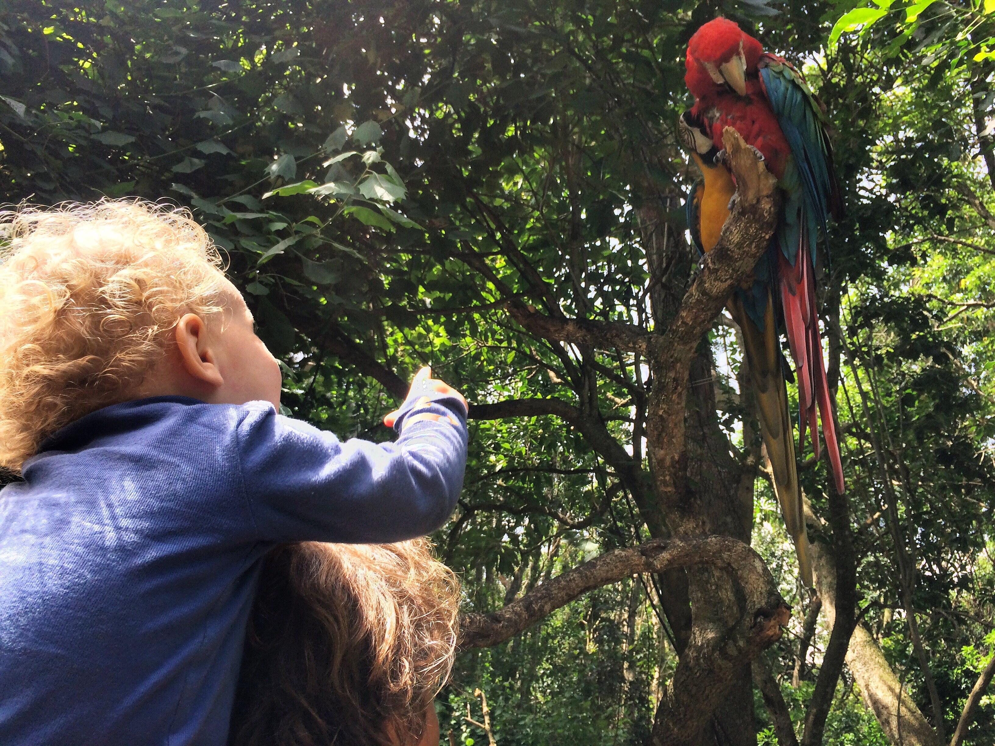 7 Gründe für einen Familien-Urlaub in Südafrika