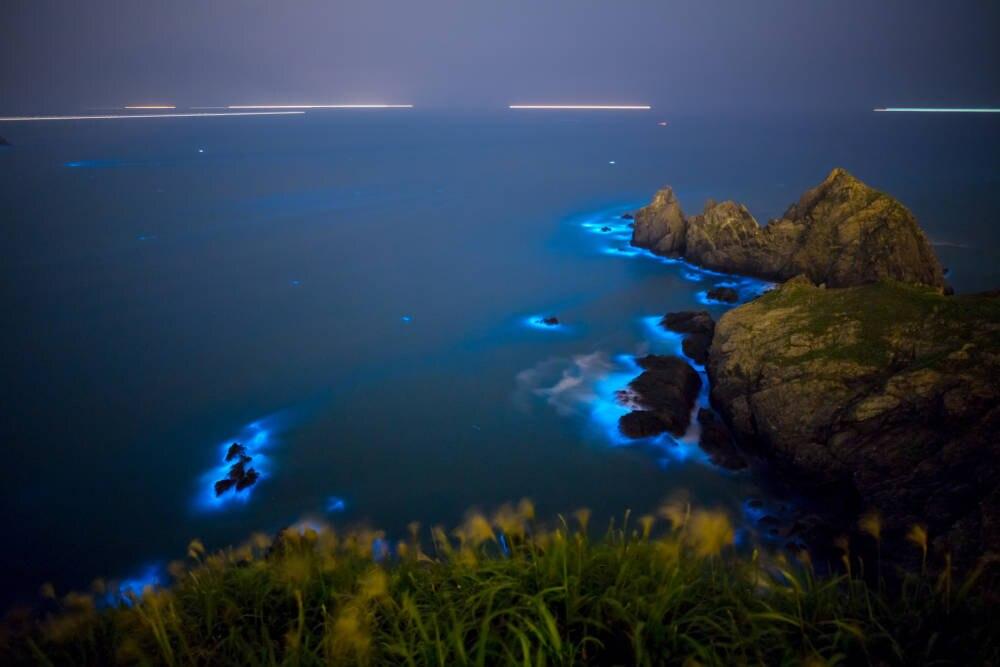 Biolumineszenz An Diesen Orten Leuchtet Das Meer Blau Travelbook