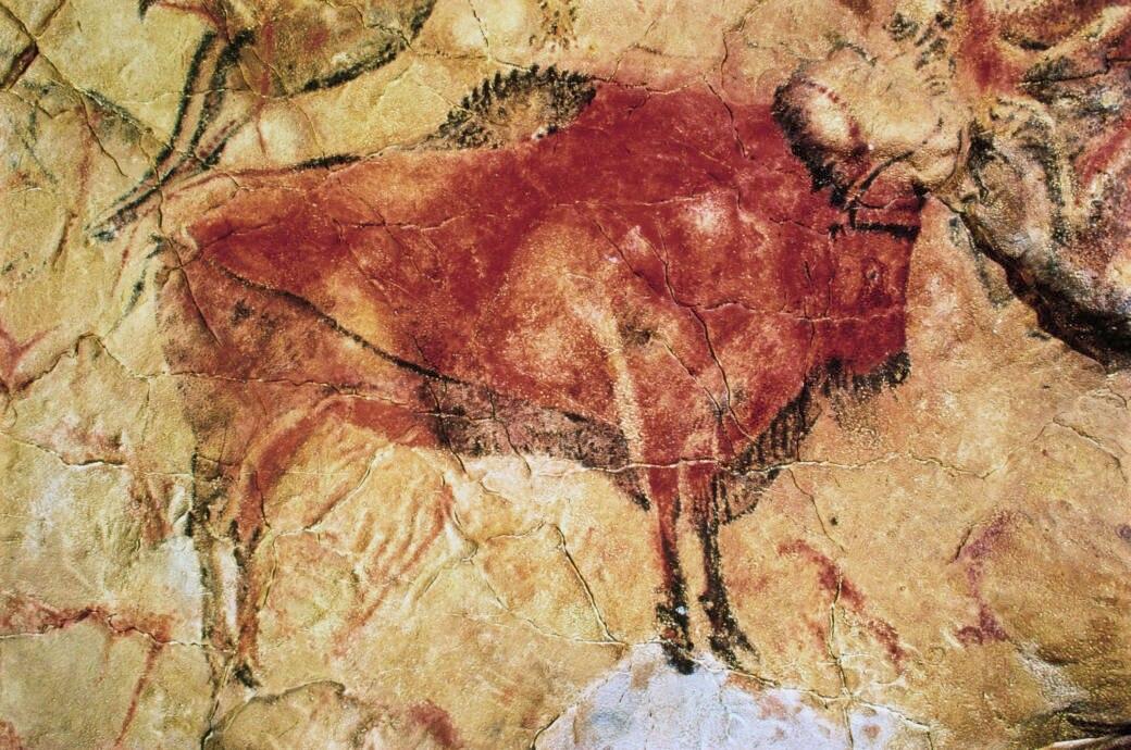Stier, Altamira-Höhle