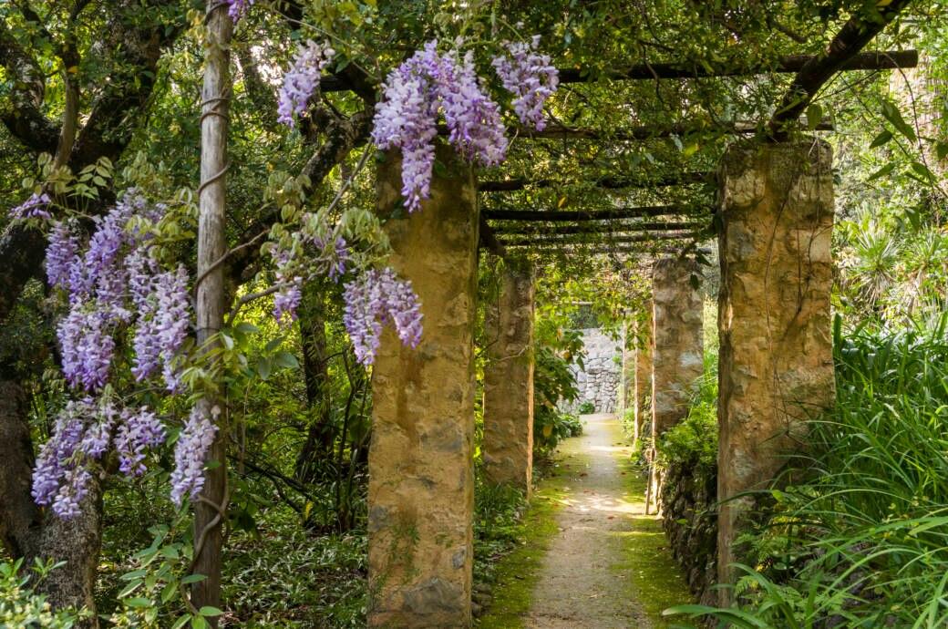 Die Spektakulären Gärten An Der Côte Dazur Travelbook