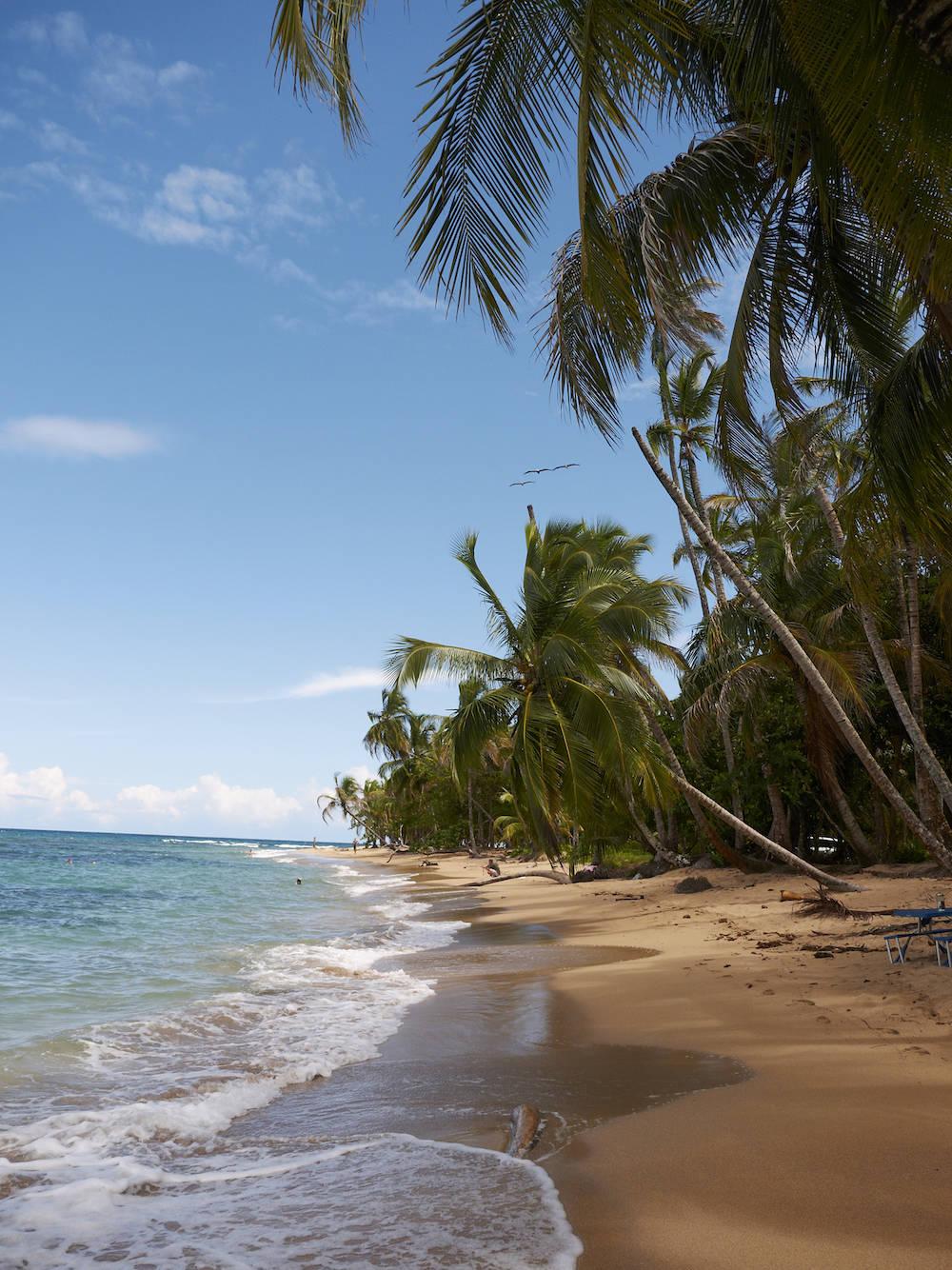 Der Strand Punta Uva in Costa Rica